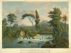 View Of The Bridge Across Cabaritta River In The Parish Of Westmorland, Jamaica